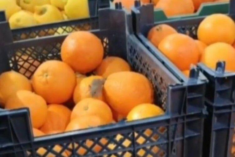 У рівненському супермаркеті серед апельсинів бігала миша