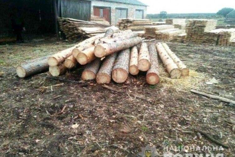Ексдиректора лісгоспу судитимуть за привласнення деревини на понад 600 тис. гривень