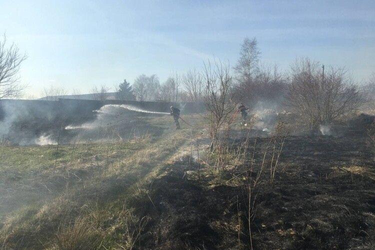 На Горохівщині вигоріло півтора гектара сухостою