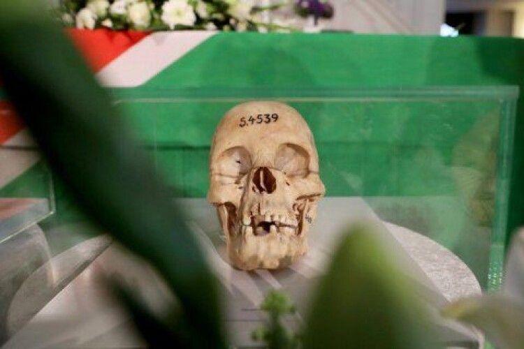 «Історичний» крок і мільярд євро: Німеччина попросила вибачення за геноцид у Намібії