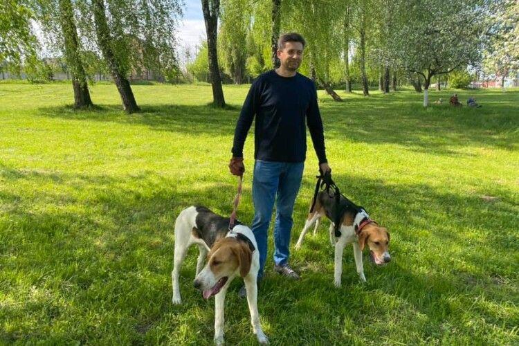 Любителі «бах-бах» показали своїх «гав-гав»: у Луцьку відгриміла виставка мисливських собак (Фото)