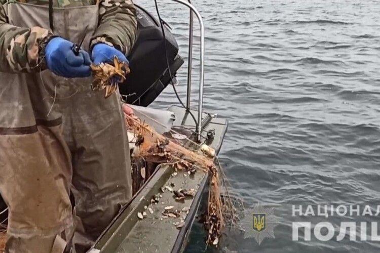Браконьєри натягали червонокнижної риби та крабів на понад мільйон гривень (Фото)