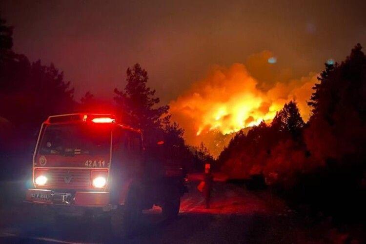 У Туреччині звітують про взяття під контроль більшості лісових пожеж