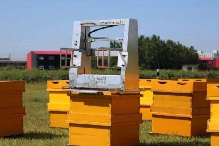 Вчені створили робота-бджоляра, який збирає стільники з вуликів (Відео)