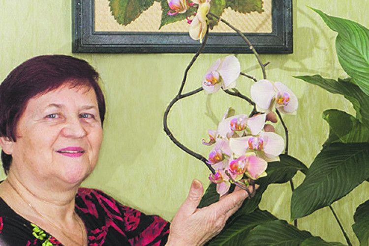 Бабусині сокирки і небо з орхідей