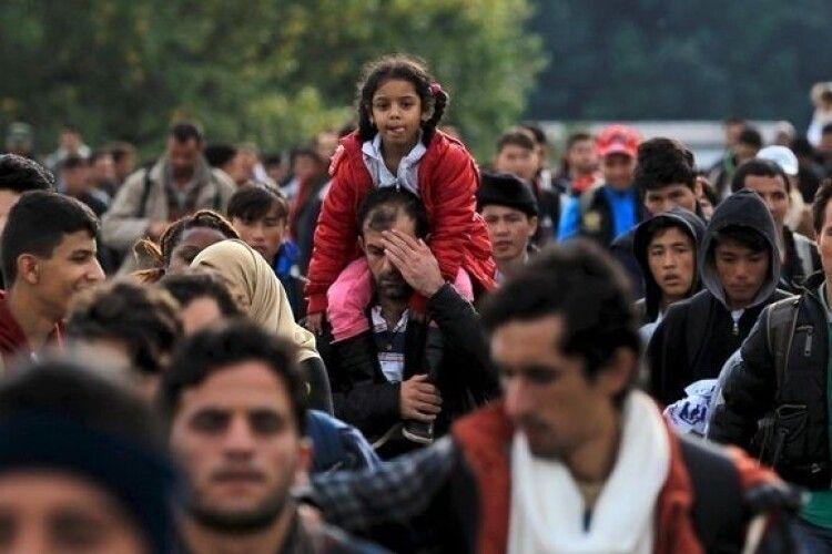 Польща показала, як мігранти прориваються через кордон (Відео)