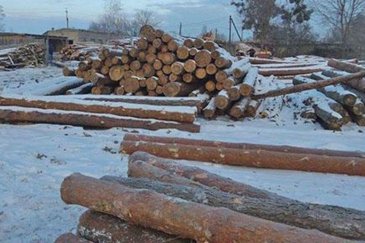 На Рівненщині виявили 200 кубометрів вкраденого лісу