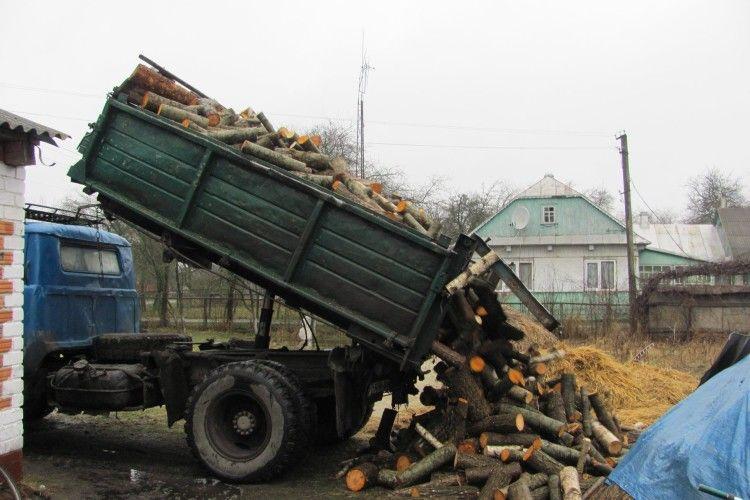 Волинянин допоміг звільненому із полону бійцю машиною дров (Фото)