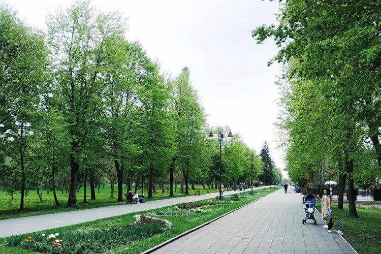 У Луцьку на  вході до Центрального парку хочуть встановити світлофор