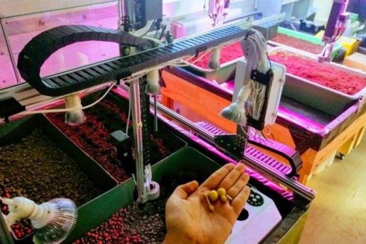 В Україні роботизовані ферми можуть стати конкурентом полішуків?