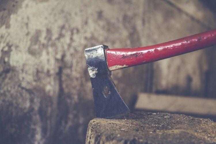 У волинському селі знайшли півсотні колод незаконно зрубаної сосни