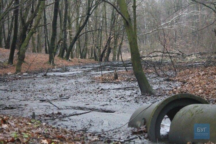 На Волині шахта зливає нечистоти просто у ліс (відео)