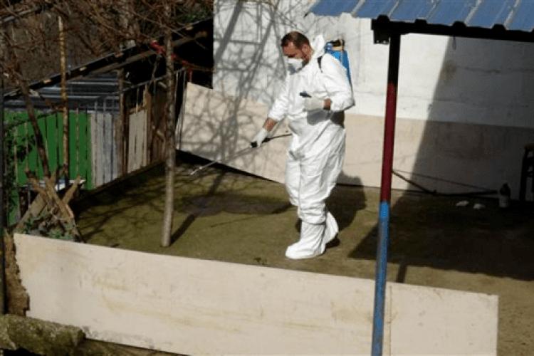 Спалах сибірки в Туреччині: нагодували м'ясом хворої корови сусідів