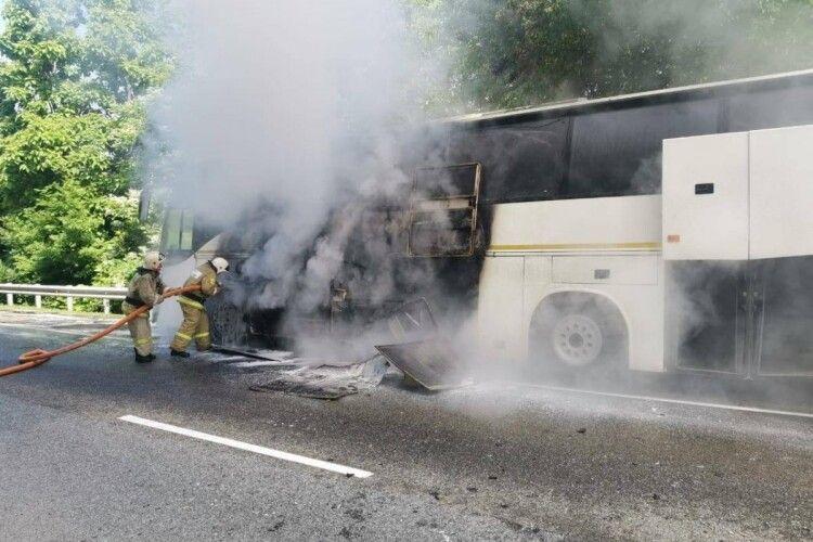 Зіткнулися два автобуси, які везли дітей із відпочинку: постраждали 15 пасажирів (Відео)