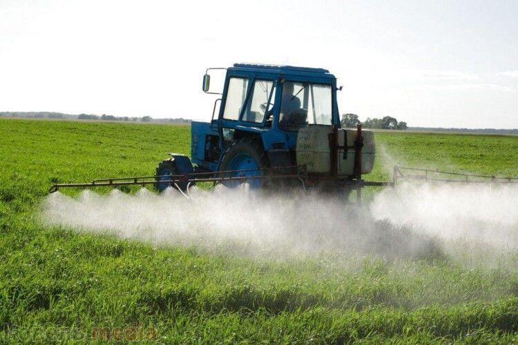 Посіви на Ковельщині двадцять днів оброблятимуть хімікатами