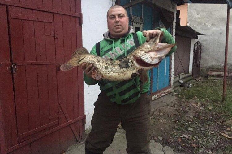 Волинського рибалку, який похвалився у Facebook гігантськими щуками-трофеями, запідозрили в браконьєрстві (Фото)