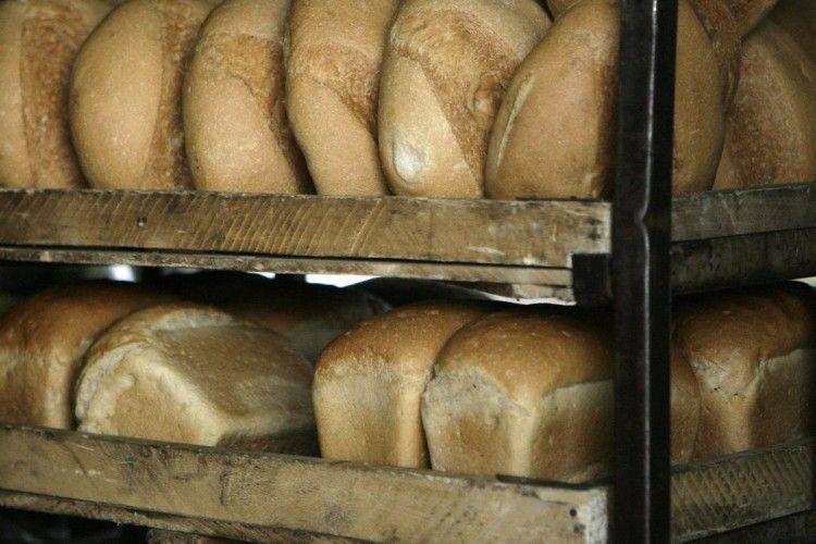Вже до кінця зими ціни на хліб підскочать на 10 відсотків