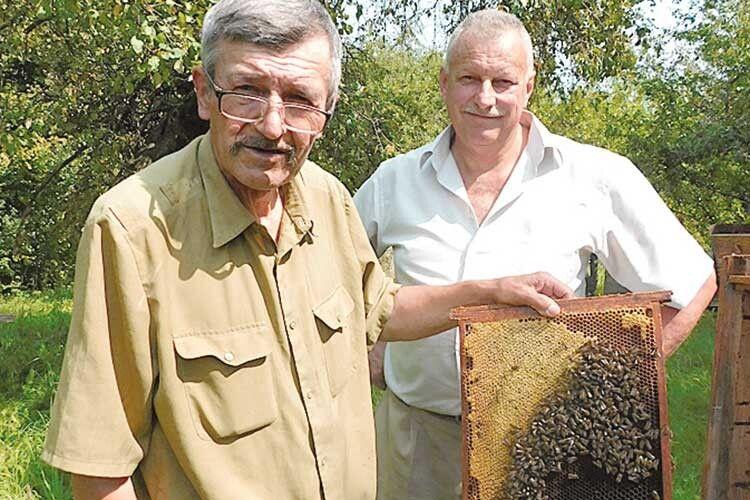Офіцер–пенсіонер з Волині знає все про бджіл