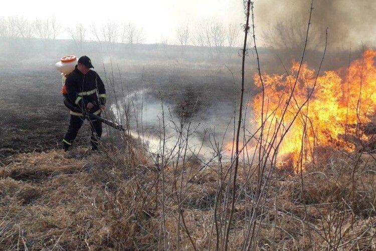 На Волині ліквідували 20 пожеж в екосистемах