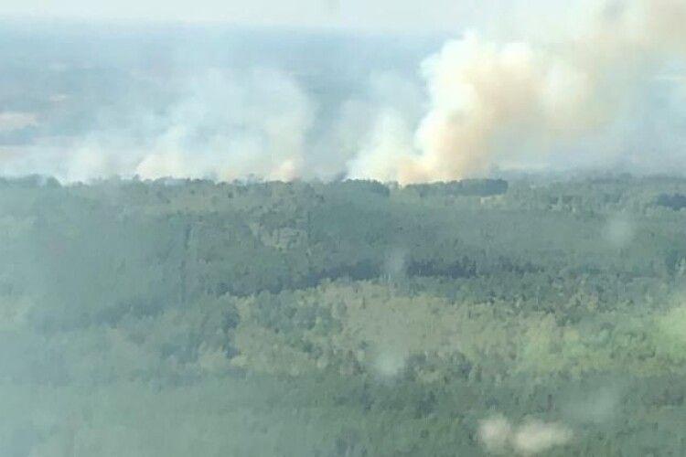 Пожежа у Чорнобильській зоні: жінка підпалила траву, щоб помститися колишнім роботодавцям