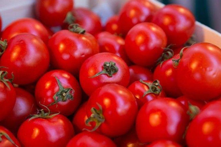 Зросли ціни на томати