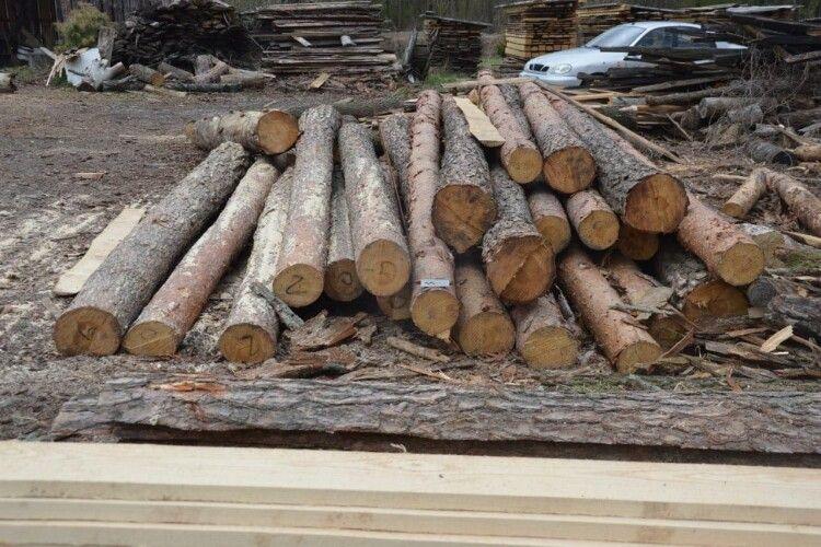 У двох селах на Ковельщині вилучили незаконну деревину (Фото)