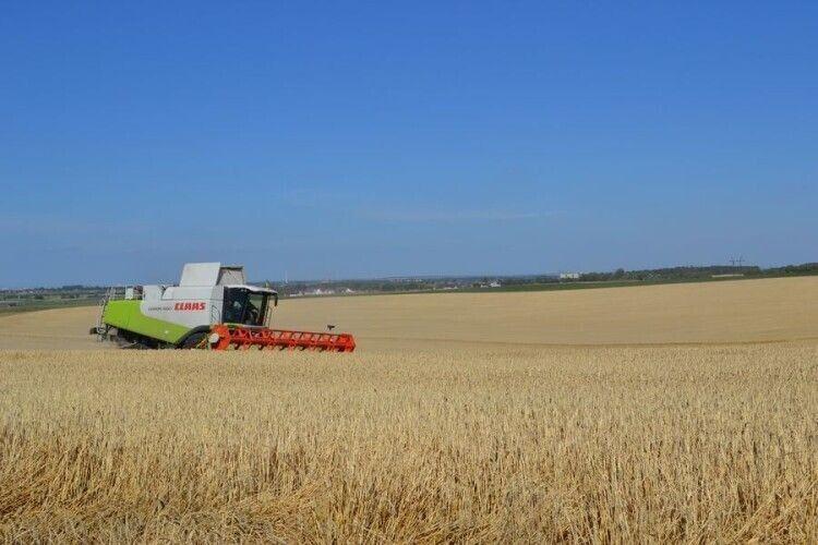 Агровиробники Волині лідирують з урожайності зернових в Україні