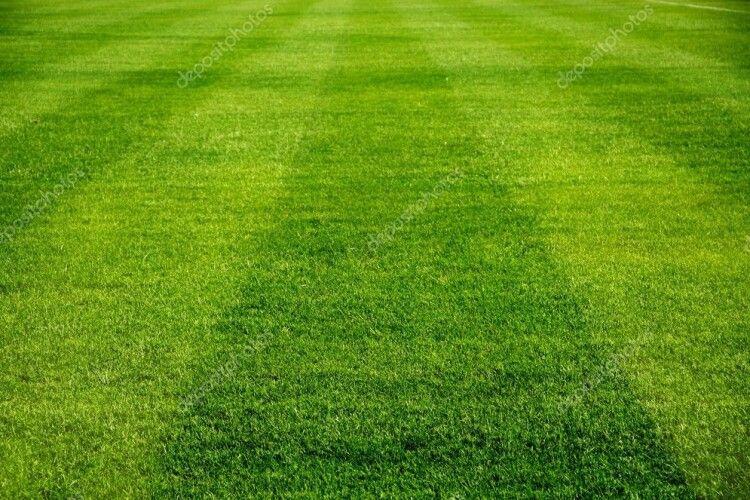 У Володимирі планують нове футбольне поле