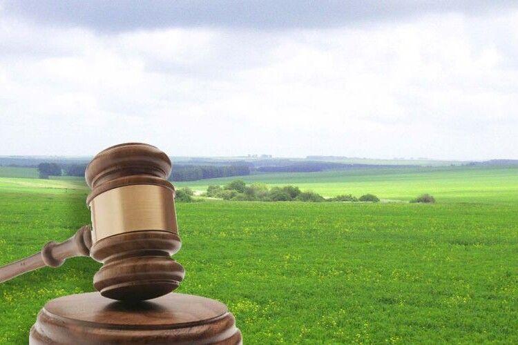 На Любешівщині проведуть торги щодо 69 гектарів землі