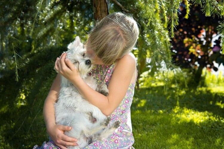 Чому собака цілує людину