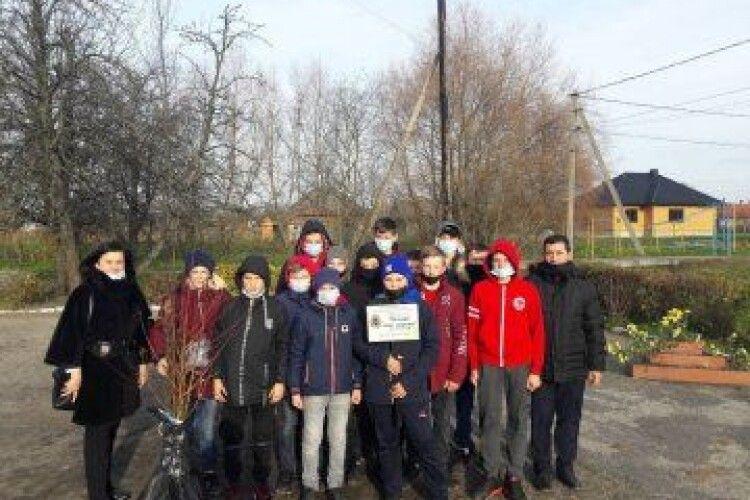 Волинські школярі разом з екологами висадили фруктовий сад