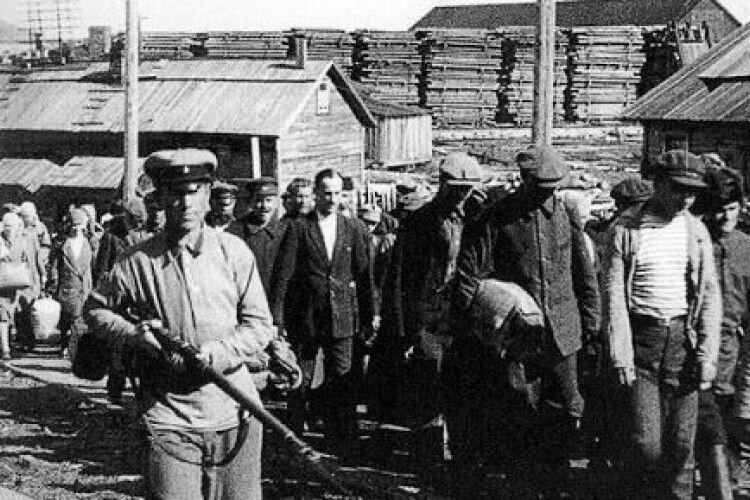 На Волині планують розпочати ексгумацію останків жертв репресій