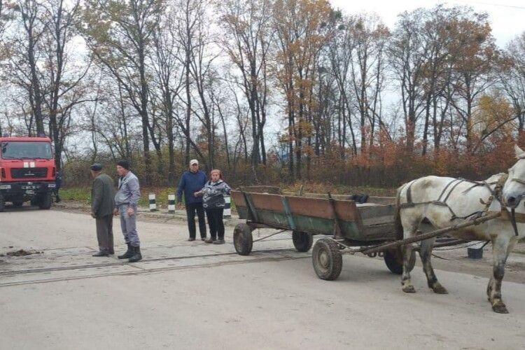 На Волині рятувальники звільнили з пастки коня, який застряг на залізничній колії (Фото)