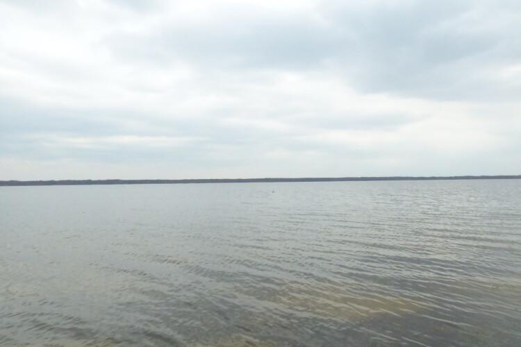 Про що мовчить одне з Шацьких озер (Фото)