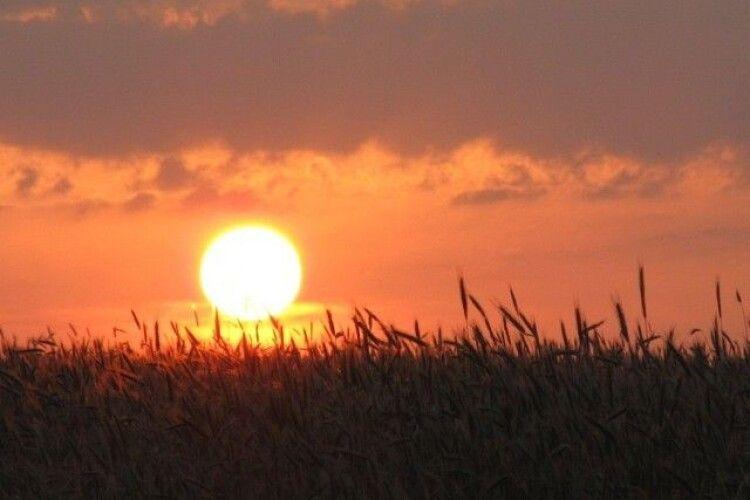 Погода на четвер, 13 серпня: спека буде помірною, без опадів