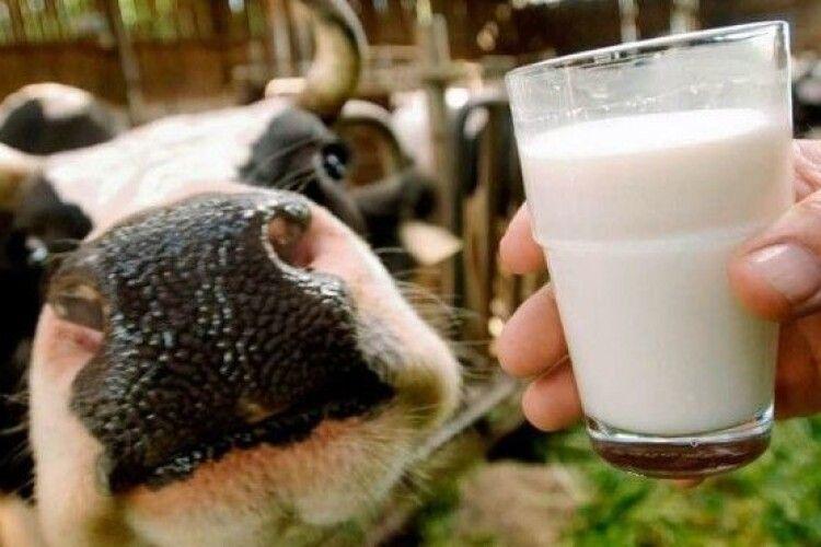 Названо село з найбільшою кількістю корів у селян