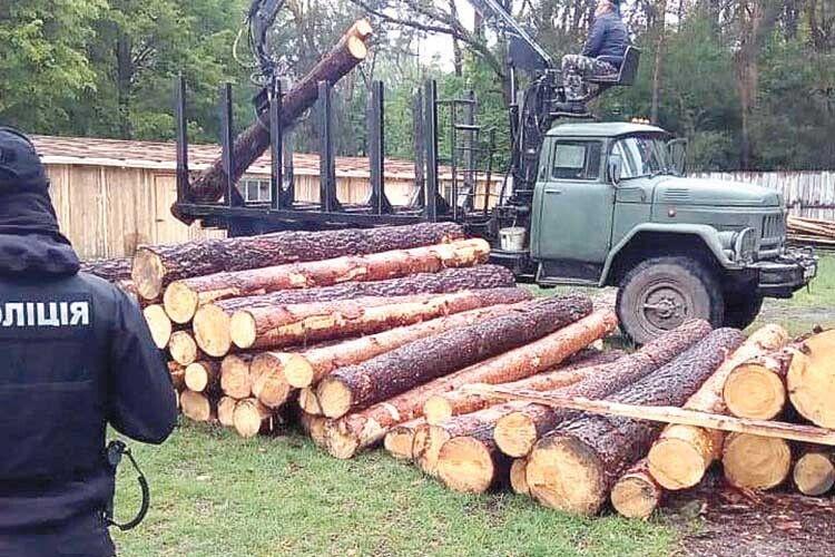КОРД добряче «потрусив» причетних довирубки лісу