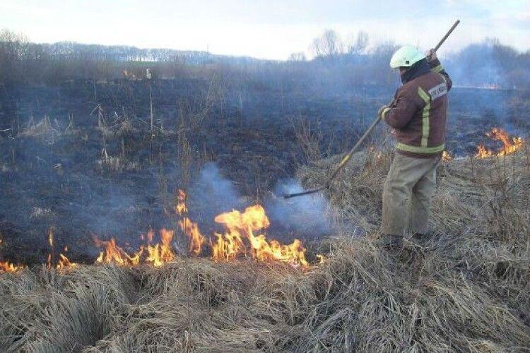 На Камінь-Каширщині виявили двох винуватців загорянь в екосистемах