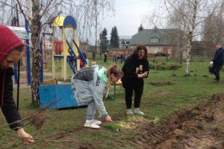 У селі під Луцьком заклали новий свер на 660 дерев (Фото)