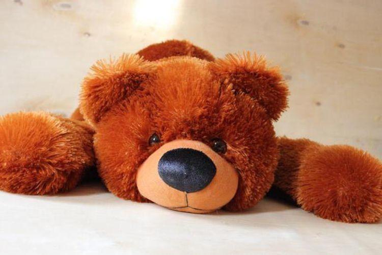 «Поговорімо ведмедиком!»