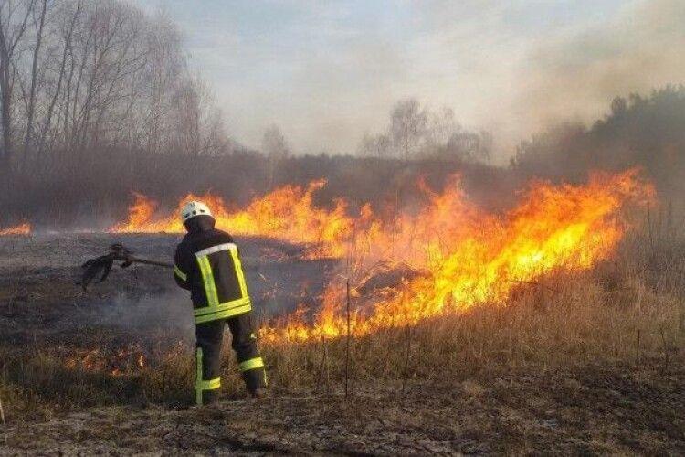 Волинські рятувальники з лідером гурту «ФлайzZza» записали відео проти спалення сухої трави