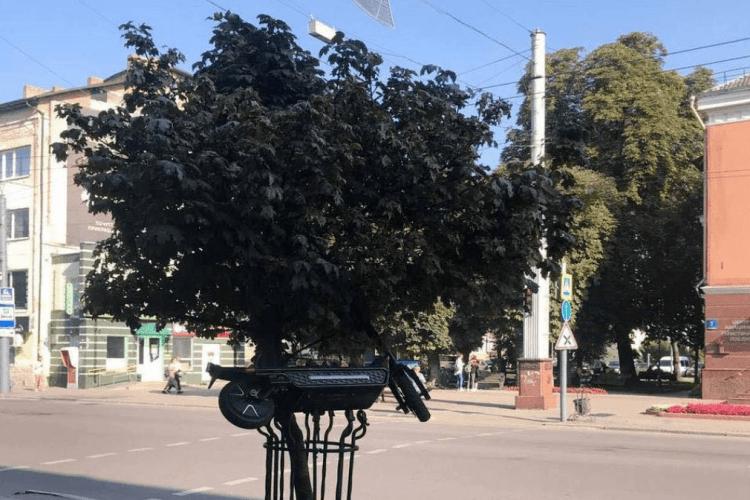 У середмісті Луцька посеред білого дня знайшли повішеним на дереві електросамокат
