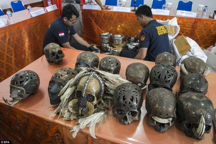 У посилках, які прямувала з Балі в Нідерланди, знайшли… 25 людських черепів