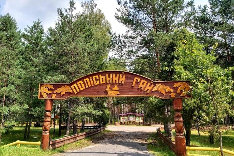 Колківські лісівники запрошують у «Поляну казок» тільки чистунів
