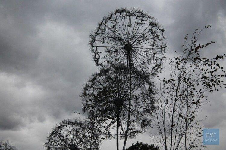 У Володимирі-Волинському з'явилась двометрова металева кульбаба