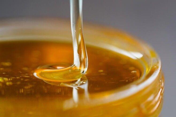 Як правильно вибрати мед і чи можна з його допомогою вилікувати застуду