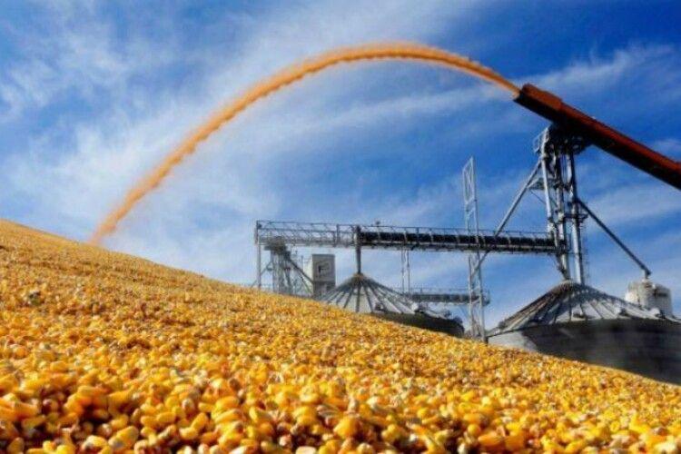 Найбільший врожай зібрали на Харківщині, Полтавщині та Вінниччині