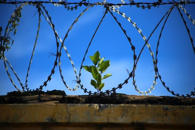 В Україні планують облаштувати платні камери для ув'язнених