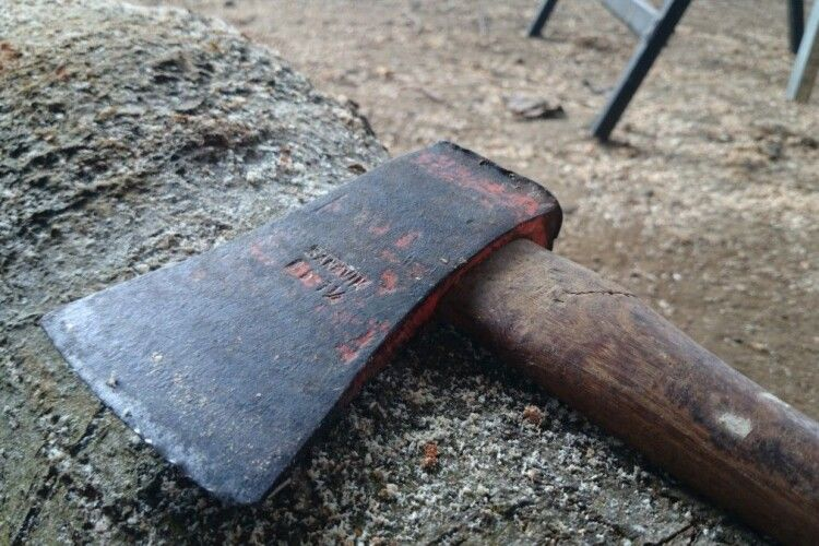 52-річного волинянина вбило деревом