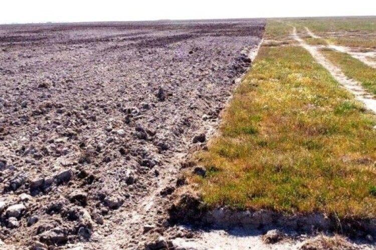 Агрокомпанія знищила майже 400 га унікального ландшафту